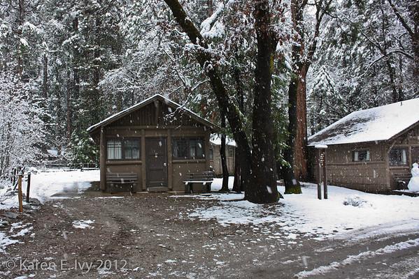 Curry Village cabin
