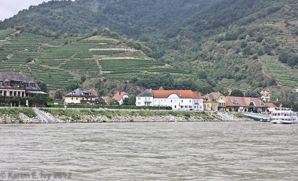 Spitz on the Danube