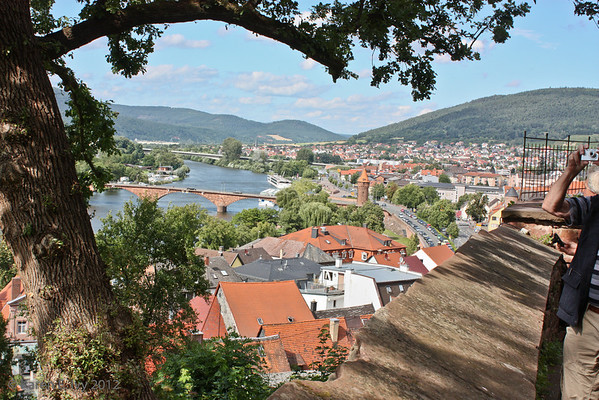 From the walls of Miltenberg
